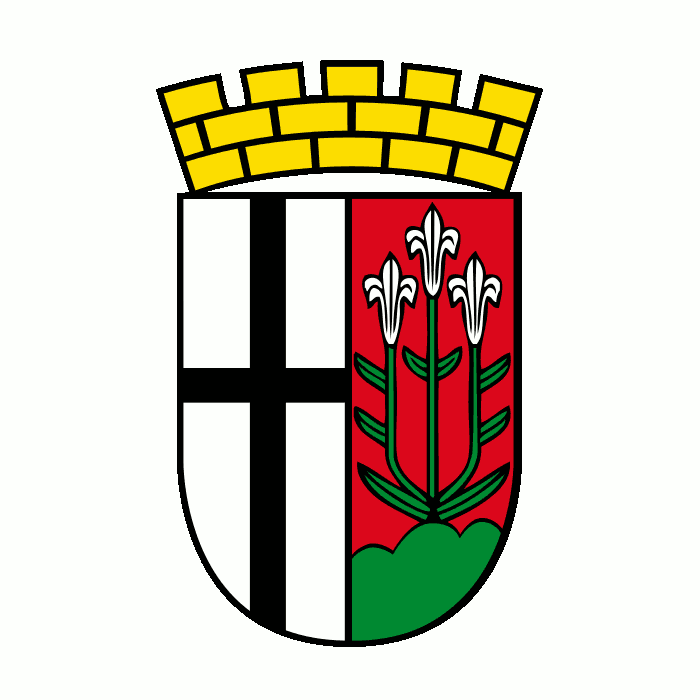 Badge of Fulda