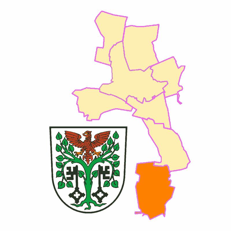 Badge of Töpchin