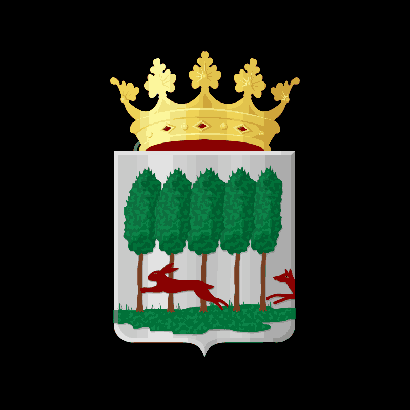 Badge of Opsterland