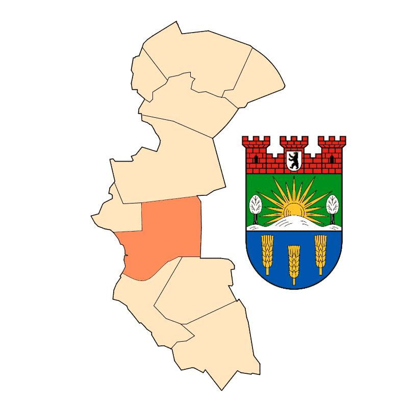 Badge of Lichtenberg