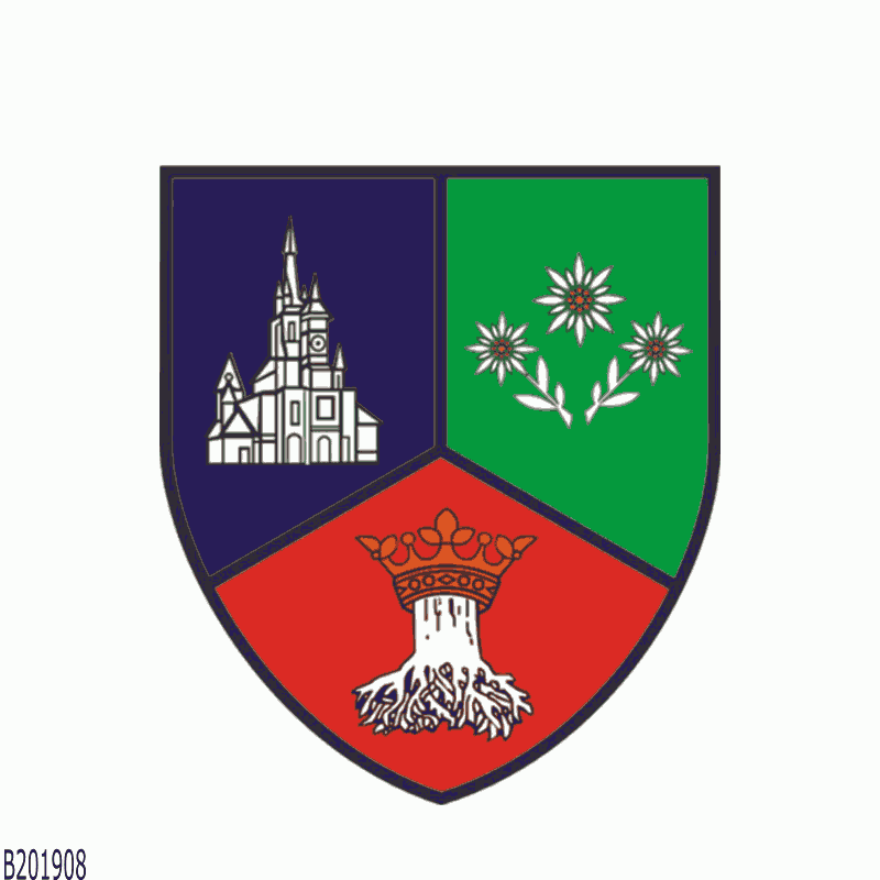 Badge of Brașov