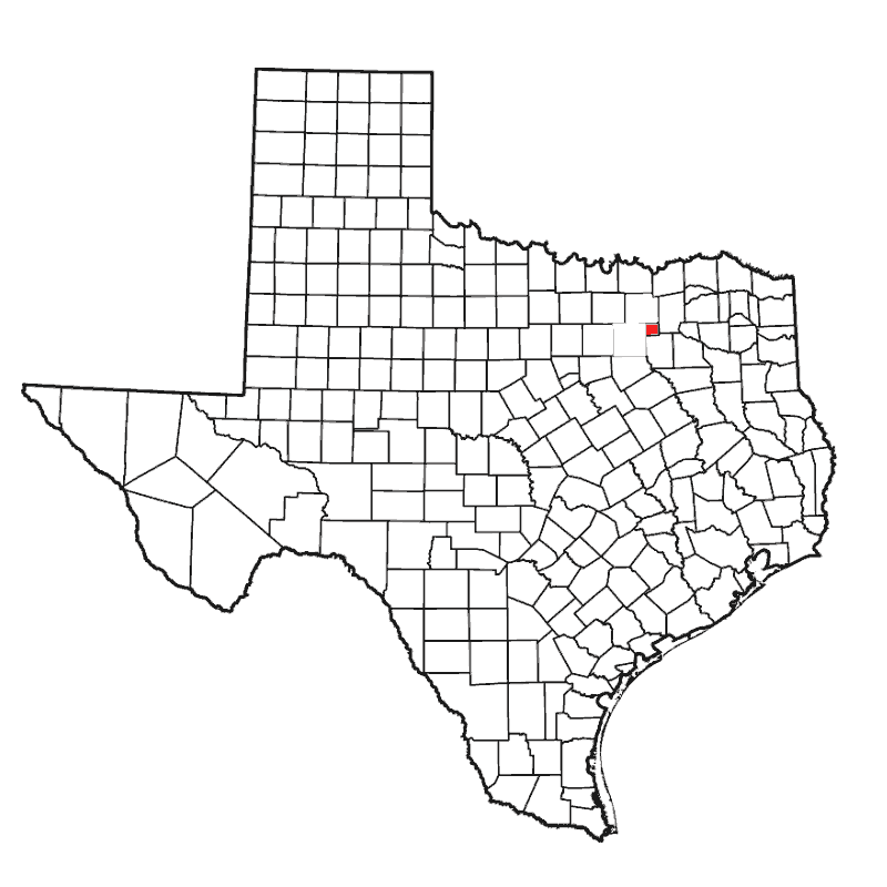 Badge of Rains County