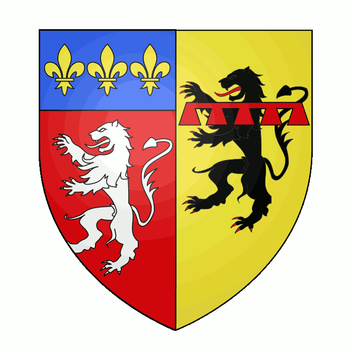 Badge of Departemental constituency of Rhône