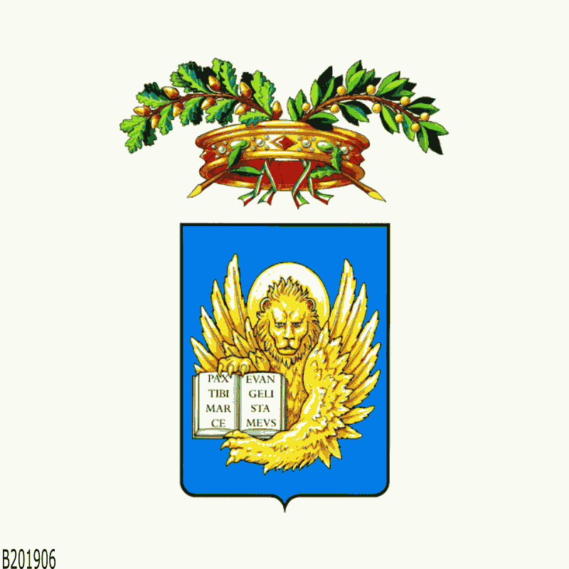 Badge of VE