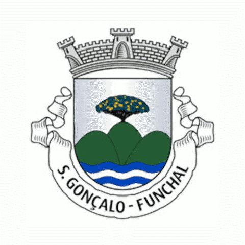 Badge of São Gonçalo