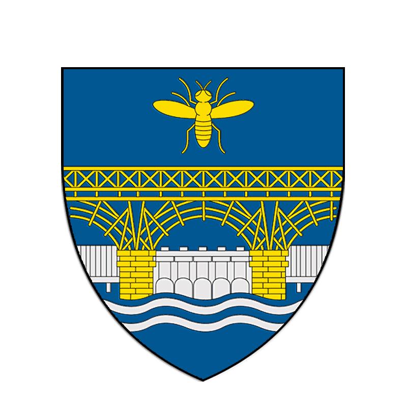 Badge of Mehedinți