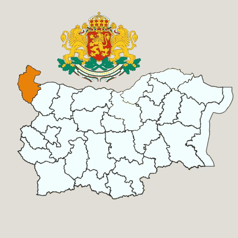Badge of Vidin