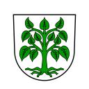 Schutterwald