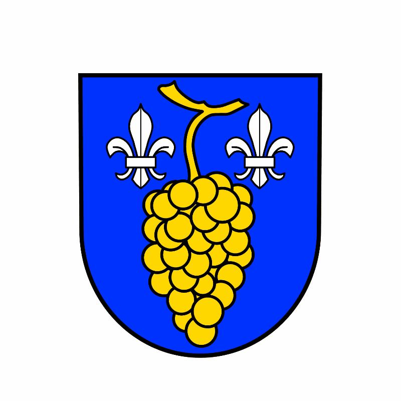 Badge of Wallhausen