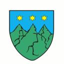 gmina Torzym